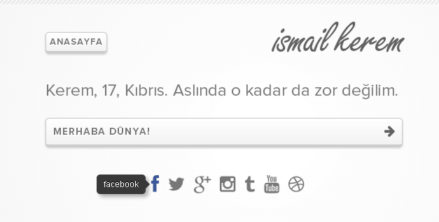 WordPress İso Mini Blog Teması