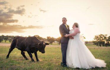 Nasıl Olsa Bir Kez Evleniyorsun İstediğini Yaptırabilirsin